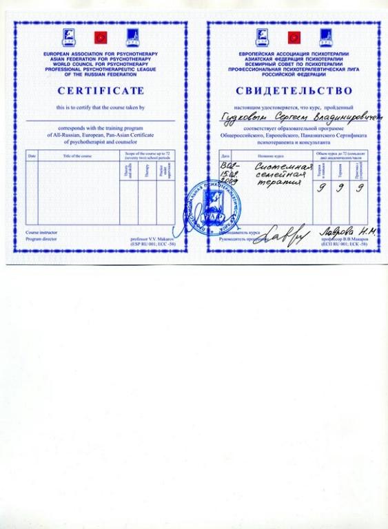 sistemnaya-semeynaya-2009