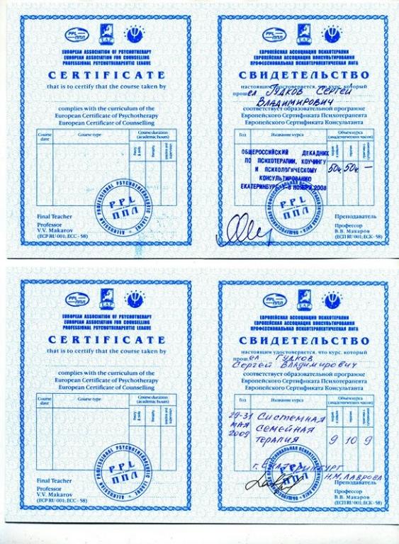 dekadnik-2008-sistemnaya-semeynaya-2009